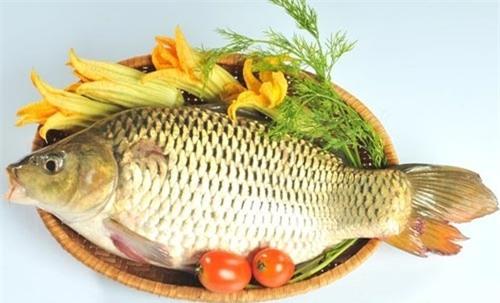 bài thuốc quý từ cá chép cho bà bầu 1